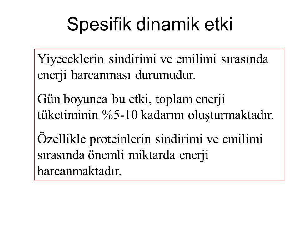 Spesifik dinamik etki Yiyeceklerin sindirimi ve emilimi sırasında enerji harcanması durumudur.