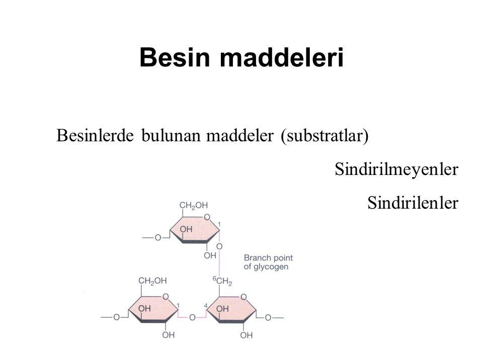 Besinlerde bulunan maddeler (substratlar) Sindirilmeyenler Sindirilenler Besin maddeleri
