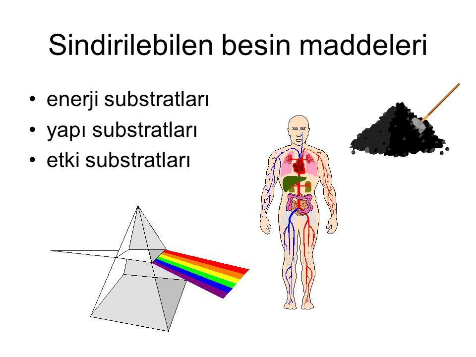 Sindirilebilen besin maddeleri enerji substratları yapı substratları etki substratları