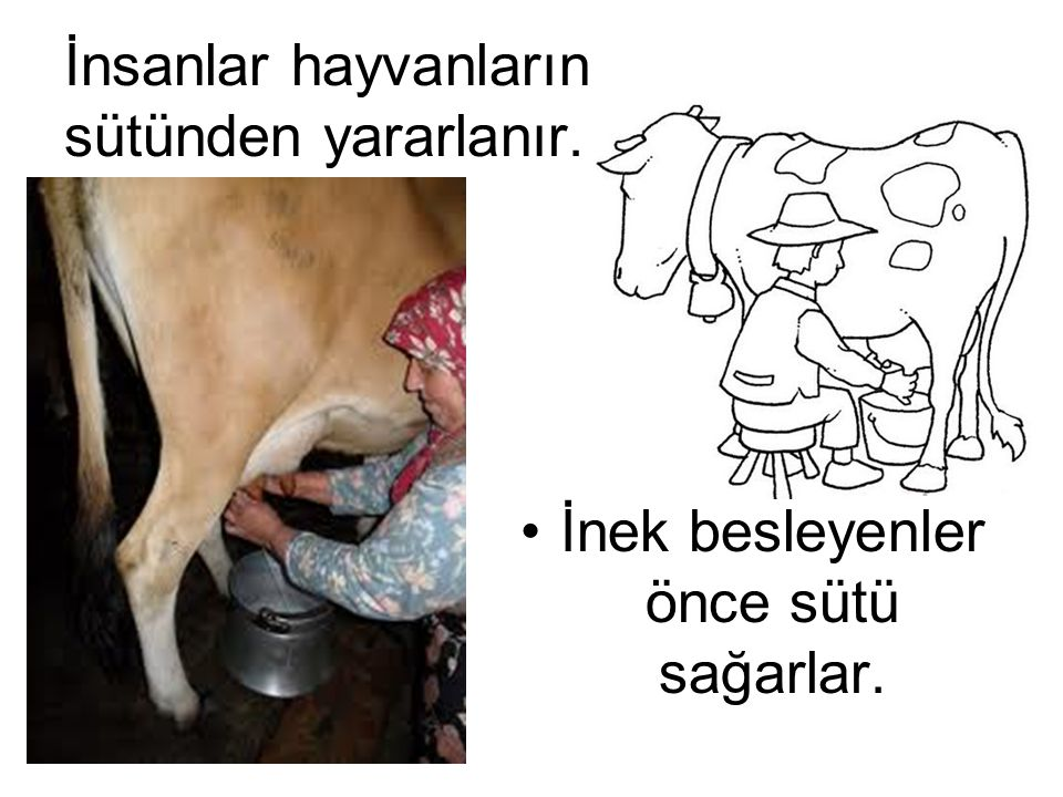 Annemiz süt ile bize neler pişirir?