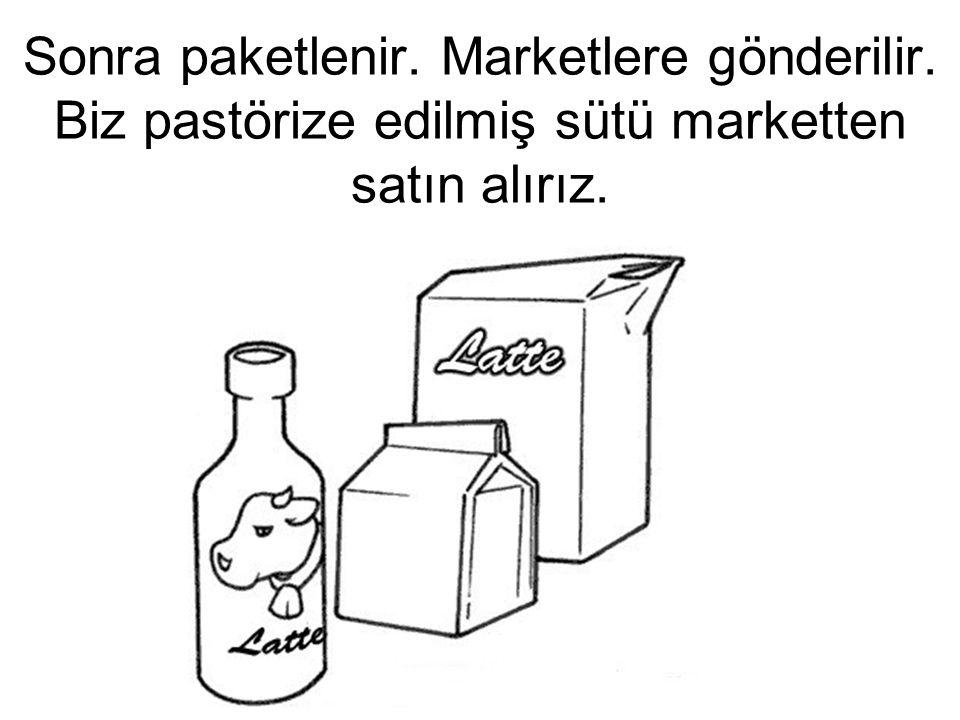 Sonra paketlenir. Marketlere gönderilir. Biz pastörize edilmiş sütü marketten satın alırız.