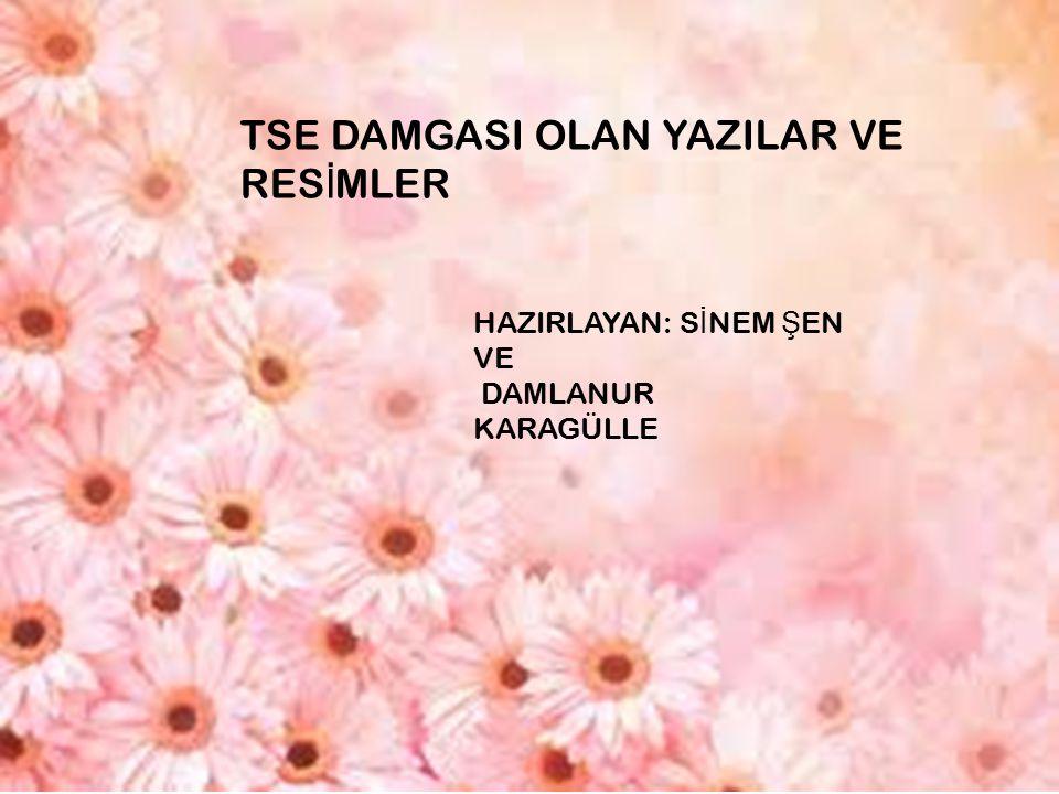 Türk Standardları Enstitüsü Türk Standardları Enstitüsü (TSE) standartlar yapmak amacıyla 1960 yılında kurulmuştur TSE, 26 Mayıs 1955 de ISO ya, 1 Ocak 1956 tarihinde de Uluslararası Elektroteknik Komisyonu na (IEC) asil üye olmuştur ve bu kuruluşların Türkiye temsilcisi konumuna gelmiştir 7 Kasım 1959 tarihinde kabul edilen Türk Standartlarının Tatbiki Hakkında Nizamname ile, standartların uygulanmaya konulması konularına açıklık getirilmiştir Her türlü standartları hazırlamak ve hazırlatmak, bünyesinde ve hariçte hazırlanan standartları tetkik etmek, kabul edilen standartları yayınlamak gibi görevleri ifa eden TSE nin kabul ettiği standartlara Türk Standardı adı verilir Türk Standardları Enstitüsü nün adındaki imla kurallarına uygun olmayan Standardları (Standartları olması gerekir) kelimesi, kurumun kuruluşunda böyle yazıldığı için değiştirilememektedir ve dolayısıyla tüm resmi yazışmalarda zorunlu olarak yanlış şekilde kullanılmaktadır Enstitünün bağlı bulunduğu bakanlık, Başbakanlıktır.