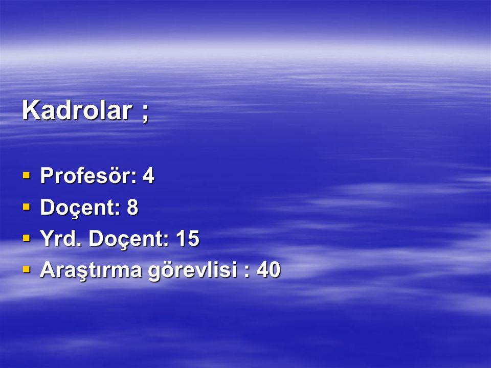 Kadrolar ;  Profesör: 4  Doçent: 8  Yrd. Doçent: 15  Araştırma görevlisi : 40