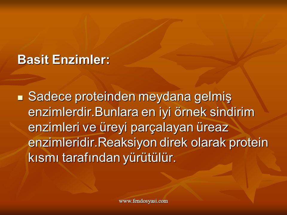 www.fendosyasi.com Basit Enzimler: Sadece proteinden meydana gelmiş enzimlerdir.Bunlara en iyi örnek sindirim enzimleri ve üreyi parçalayan üreaz enzi