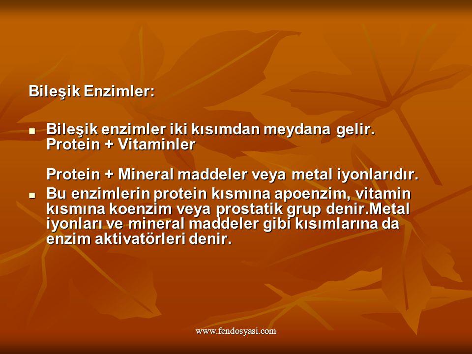 www.fendosyasi.com Bileşik Enzimler: Bileşik enzimler iki kısımdan meydana gelir. Protein + Vitaminler Protein + Mineral maddeler veya metal iyonlarıd