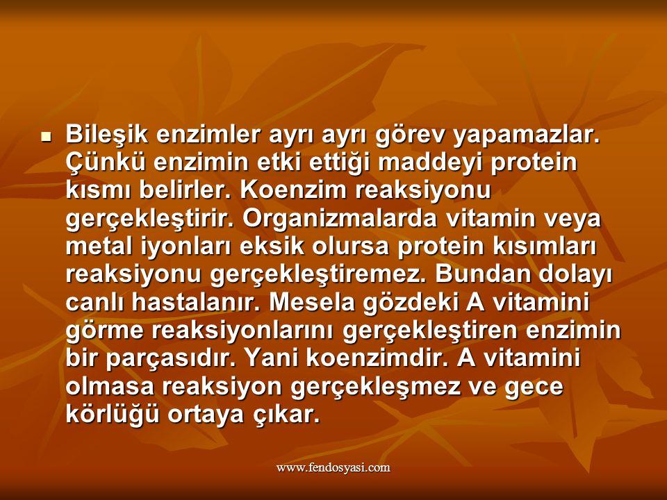 www.fendosyasi.com Bileşik enzimler ayrı ayrı görev yapamazlar. Çünkü enzimin etki ettiği maddeyi protein kısmı belirler. Koenzim reaksiyonu gerçekleş