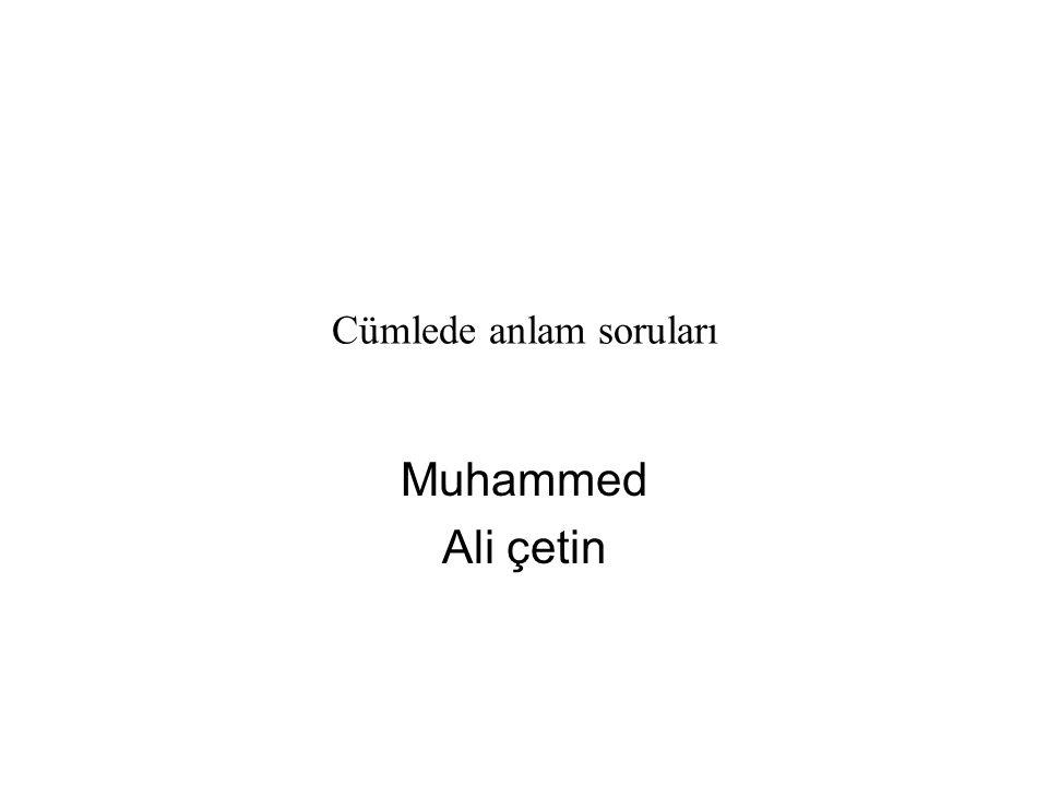 Cümlede anlam soruları Muhammed Ali çetin