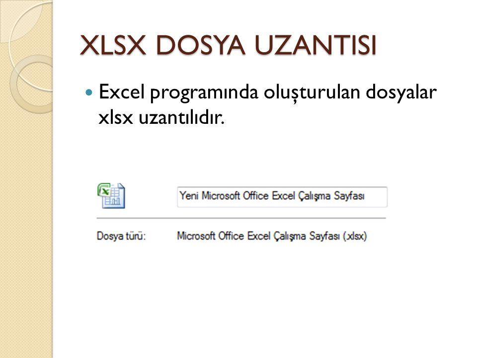 XLSX DOSYA UZANTISI Excel programında oluşturulan dosyalar xlsx uzantılıdır.