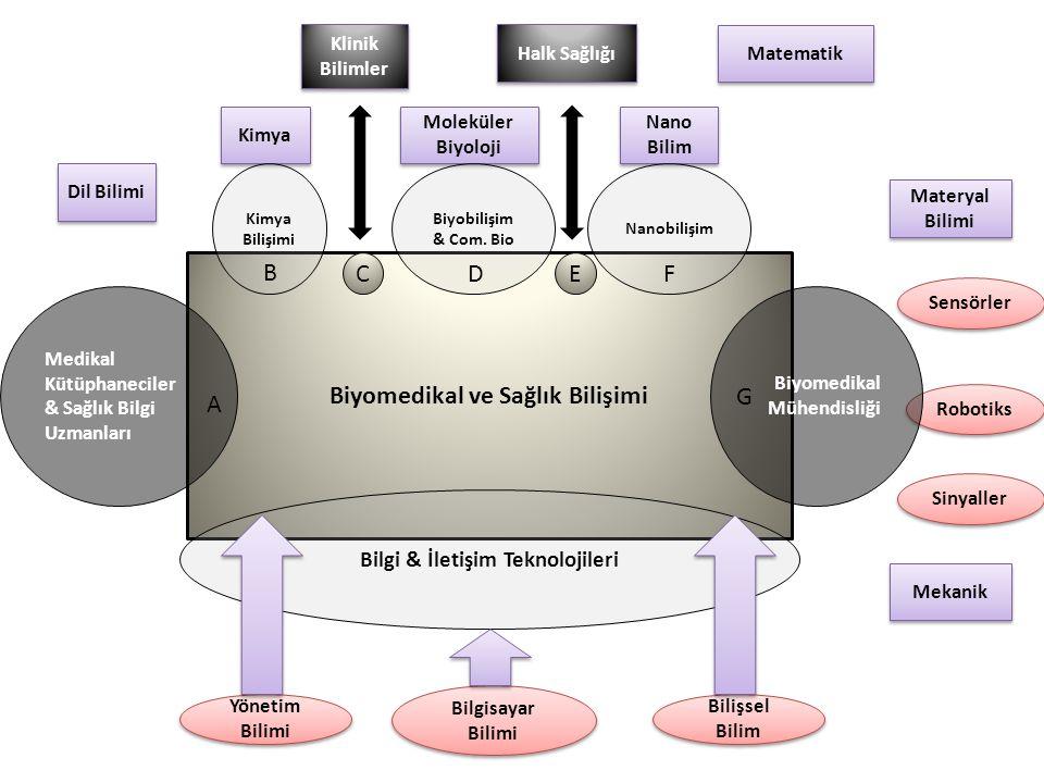 Kimya Dil Bilimi Klinik Bilimler Moleküler Biyoloji Halk Sağlığı Nano Bilim Matematik Materyal Bilimi Mekanik Biyomedikal ve Sağlık Bilişimi Sensörler