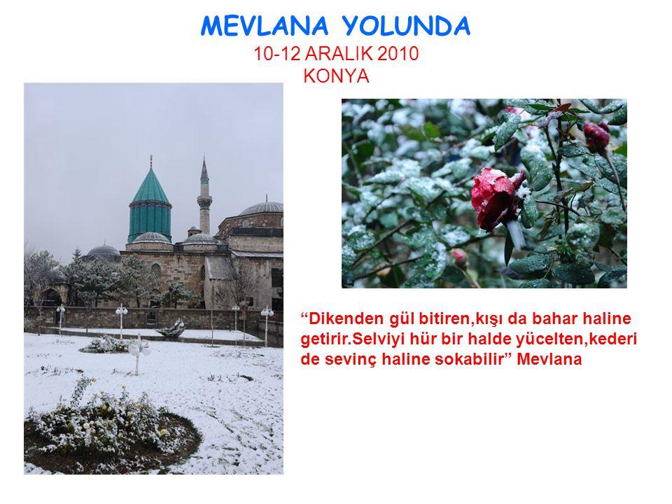 """MEVLANA YOLUNDA 10-12 ARALIK 2010 KONYA """"Dikenden gül bitiren,kışı da bahar haline getirir.Selviyi hür bir halde yücelten,kederi de sevinç haline soka"""