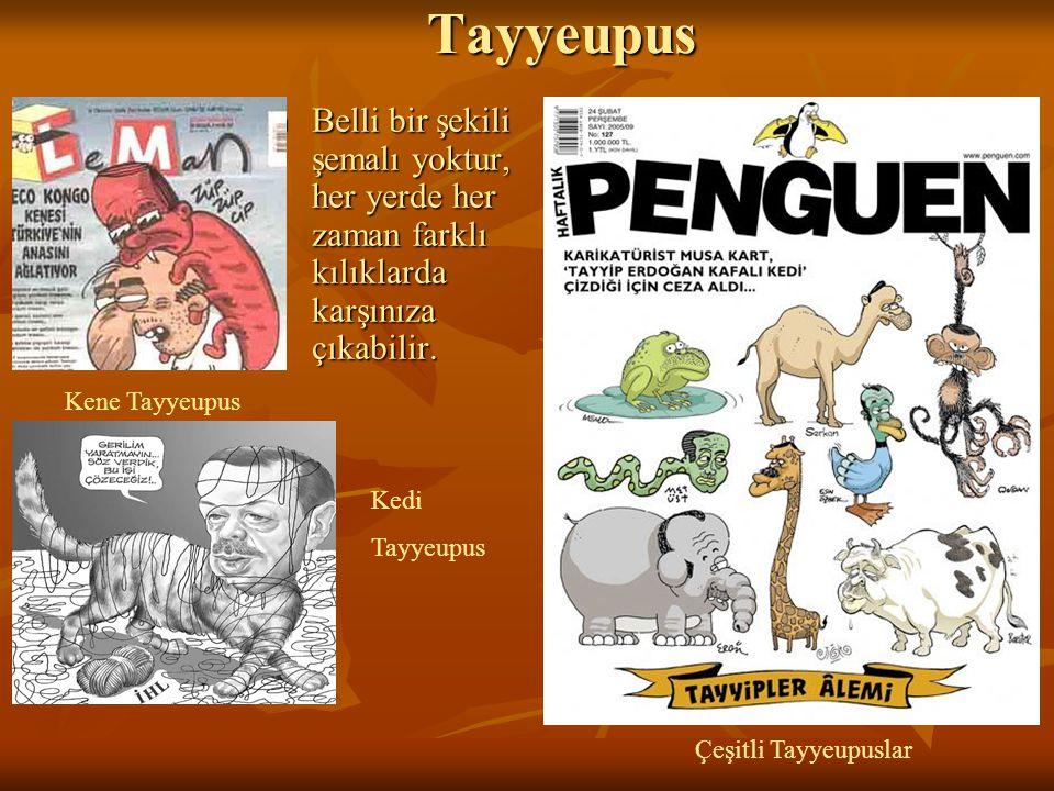 Tayyeupus Tayyeupus Belli bir şekili şemalı yoktur, her yerde her zaman farklı kılıklarda karşınıza çıkabilir. Belli bir şekili şemalı yoktur, her yer