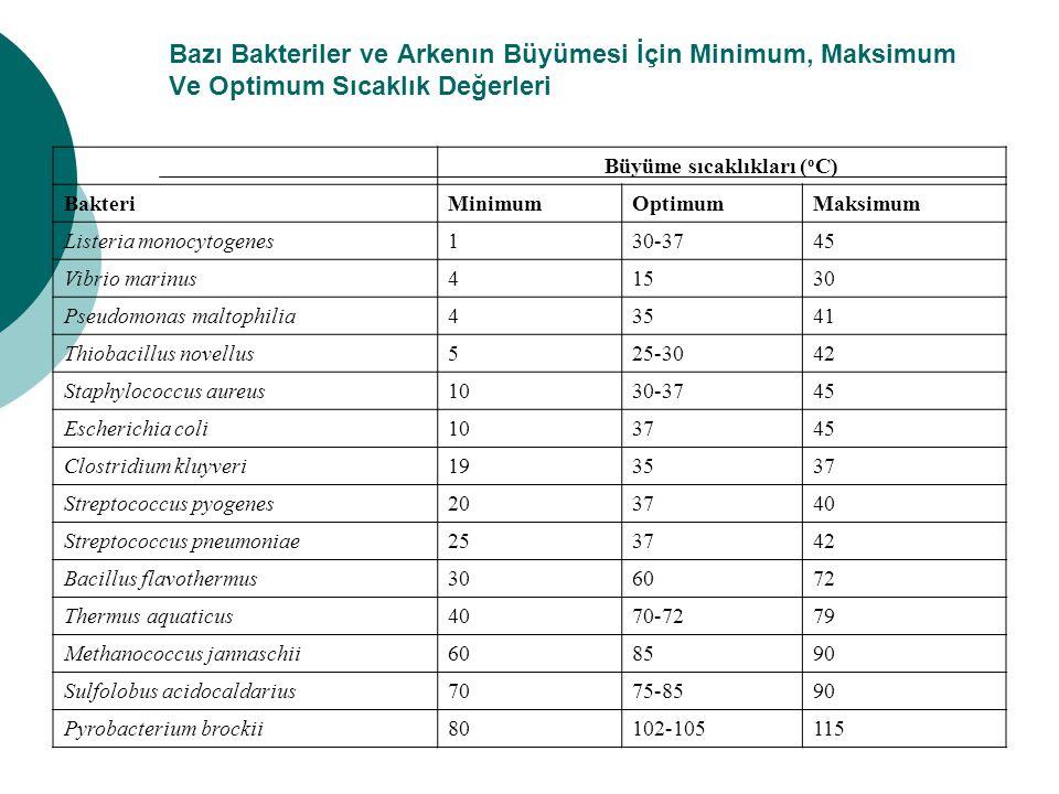 Bazı Bakteriler ve Arkenın Büyümesi İçin Minimum, Maksimum Ve Optimum Sıcaklık Değerleri Büyüme sıcaklıkları ( o C) BakteriMinimumOptimumMaksimum List