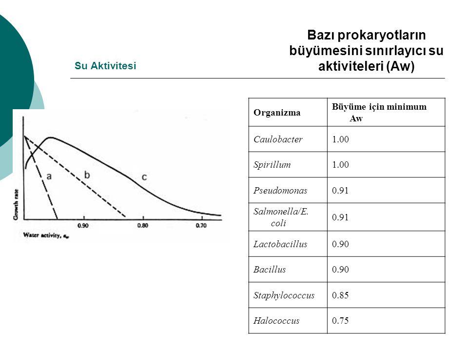 Su Aktivitesi Organizma Büyüme için minimum Aw Caulobacter1.00 Spirillum1.00 Pseudomonas0.91 Salmonella/E. coli 0.91 Lactobacillus0.90 Bacillus0.90 St