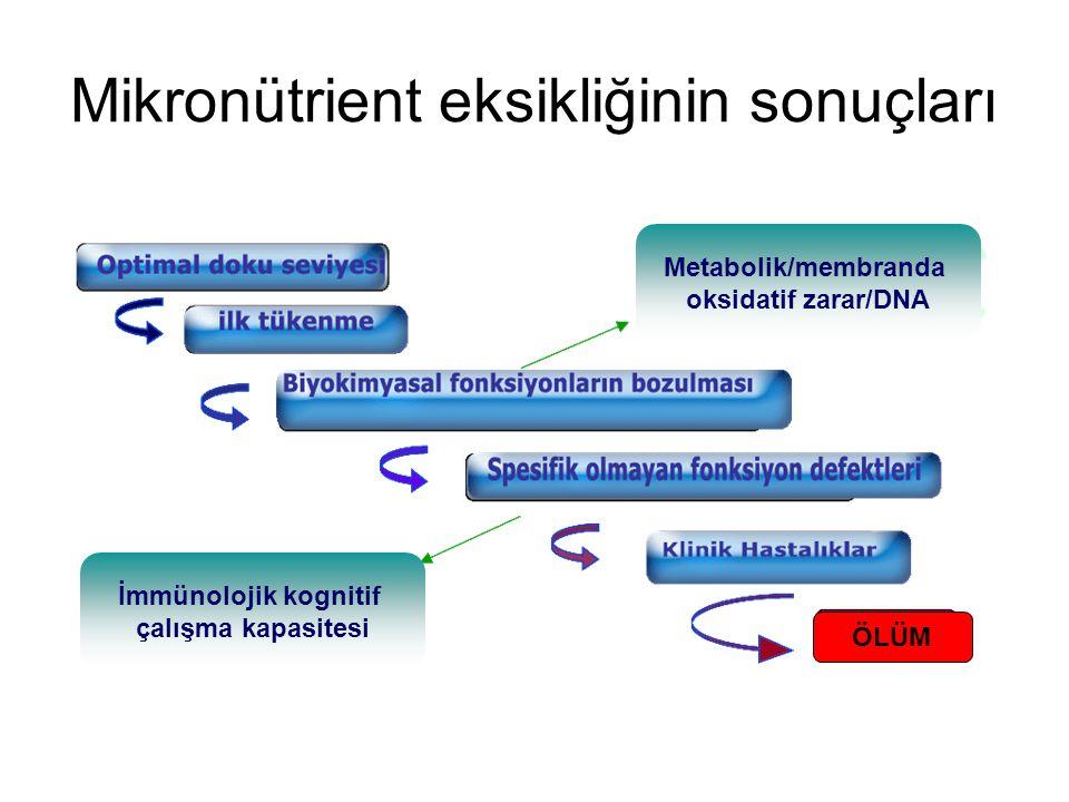 Mikronütrient eksikliğinin sonuçları ÖLÜM İmmünolojik kognitif çalışma kapasitesi Metabolik/membranda oksidatif zarar/DNA