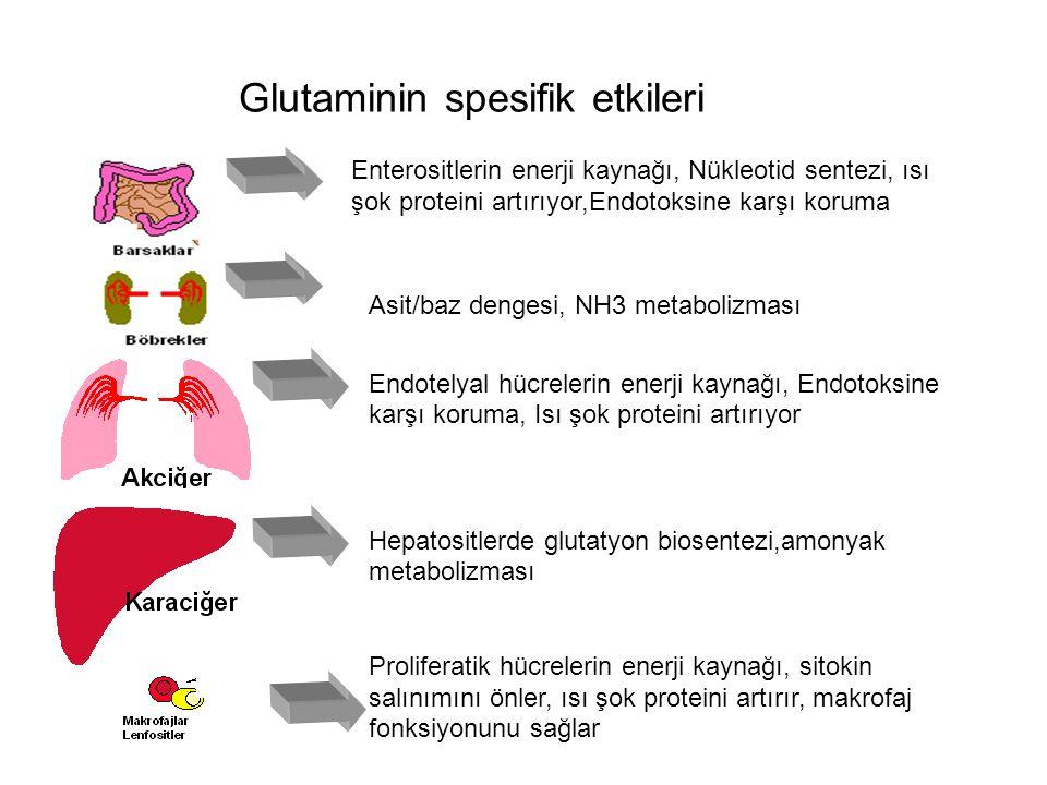 Glutaminin spesifik etkileri Enterositlerin enerji kaynağı, Nükleotid sentezi, ısı şok proteini artırıyor,Endotoksine karşı koruma Asit/baz dengesi, N