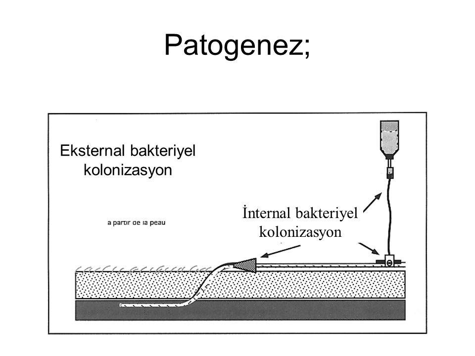 Patogenez; İnternal bakteriyel kolonizasyon Eksternal bakteriyel kolonizasyon