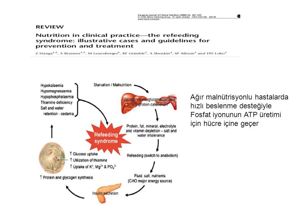 Ağır malnütrisyonlu hastalarda hızlı beslenme desteğiyle Fosfat iyonunun ATP üretimi için hücre içine geçer