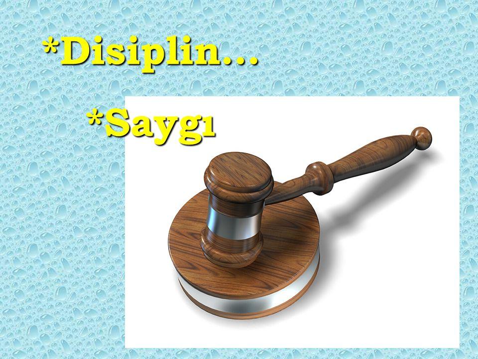 *Disiplin…*Saygı