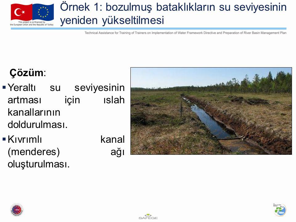 Örnek 1: bozulmuş bataklıkların su seviyesinin yeniden yükseltilmesi Çözüm:  Yeraltı su seviyesinin artması için ıslah kanallarının doldurulması.  K
