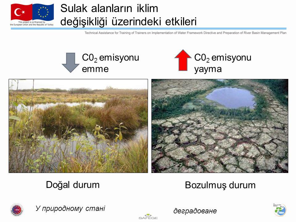У природному стані деградоване Sulak alanların iklim değişikliği üzerindeki etkileri С0 2 emisyonu emme C0 2 emisyonu yayma Doğal durum Bozulmuş durum