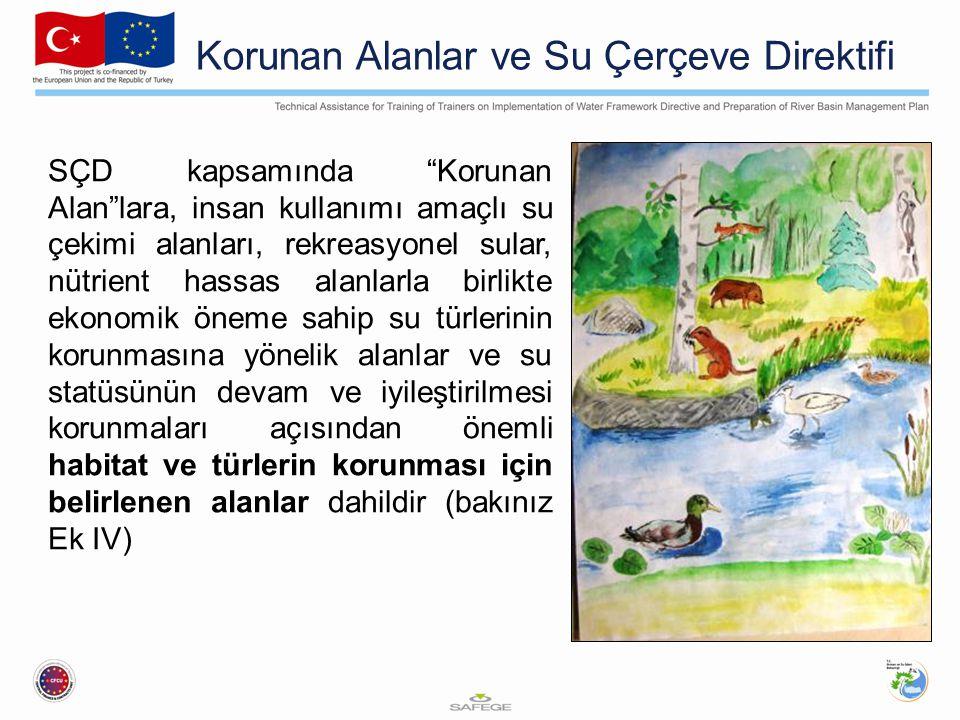 """Korunan Alanlar ve Su Çerçeve Direktifi SÇD kapsamında """"Korunan Alan""""lara, insan kullanımı amaçlı su çekimi alanları, rekreasyonel sular, nütrient has"""