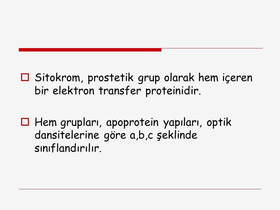  Sitokrom, prostetik grup olarak hem içeren bir elektron transfer proteinidir.  Hem grupları, apoprotein yapıları, optik dansitelerine göre a,b,c şe