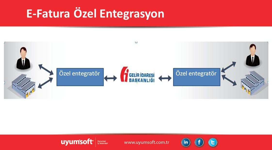E-Fatura Özel Entegrasyon Özel entegratör