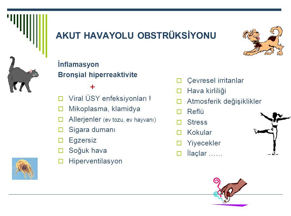 AKUT HAVAYOLU OBSTRÜKSİYONU İnflamasyon Bronşial hiperreaktivite +  Viral ÜSY enfeksiyonları !  Mikoplasma, klamidya  Allerjenler (ev tozu, ev hayv