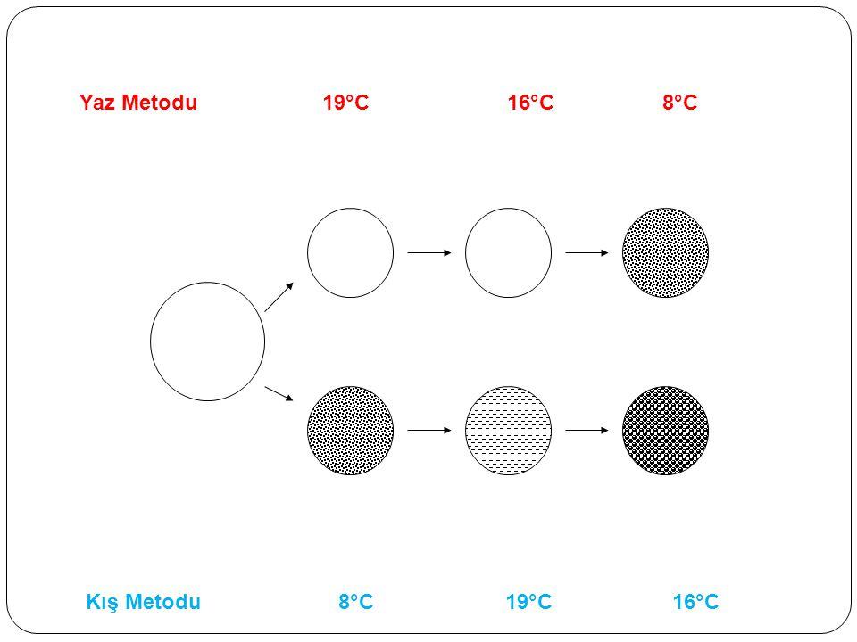 Kış Metodu 8°C 19°C 16°C Yaz Metodu 19°C 16°C 8°C
