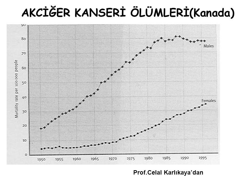 AKCİĞER KANSERİ ÖLÜMLERİ(Kanada) Prof.Celal Karlıkaya'dan