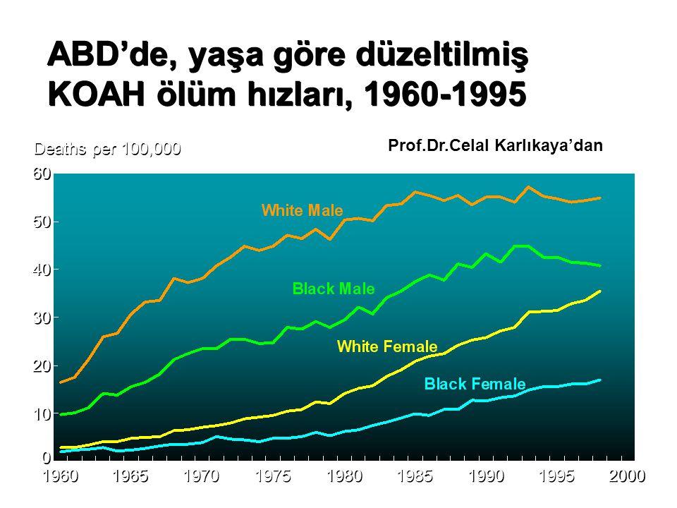 ABD'de, yaşa göre düzeltilmiş KOAH ölüm hızları, 1960-1995 60 Deaths per 100,000 1960 1965 1970 2000 1975 1980 1985 1990 1995 50 40 30 20 10 0 0 Prof.