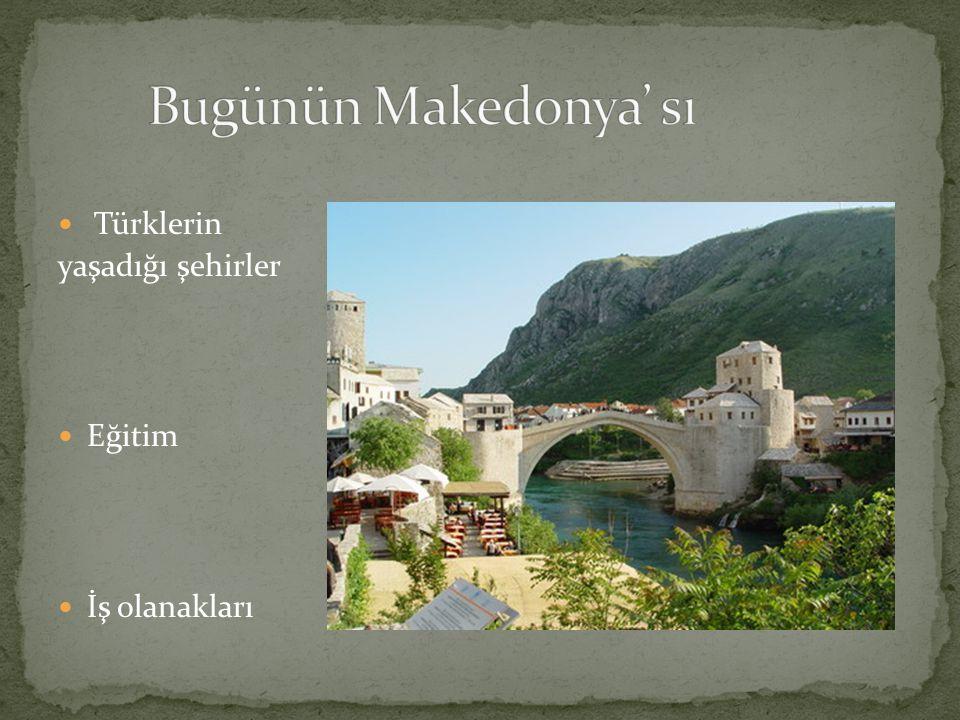 Türklerin yaşadığı şehirler Eğitim İş olanakları