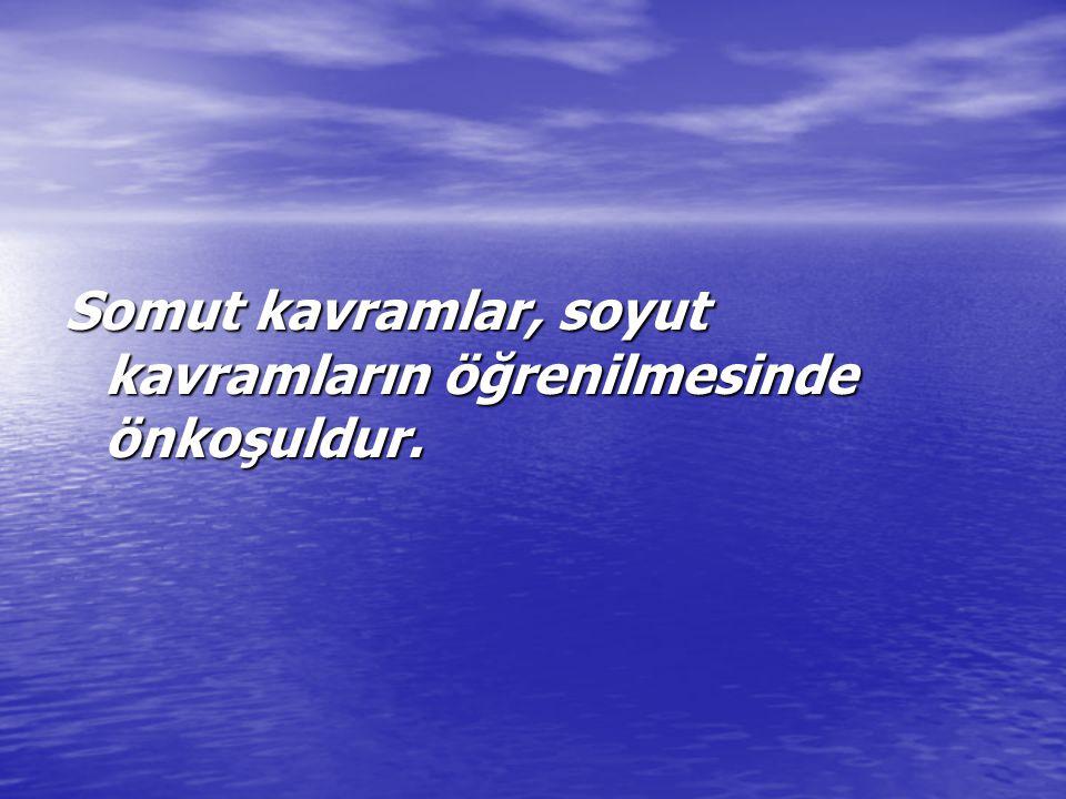 SOSYAL BECERİ NEDİR.