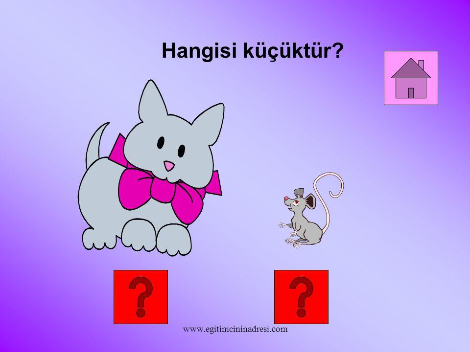 Hangisi kısadır? www.egitimcininadresi.com