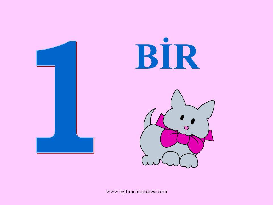 BİR www.egitimcininadresi.com