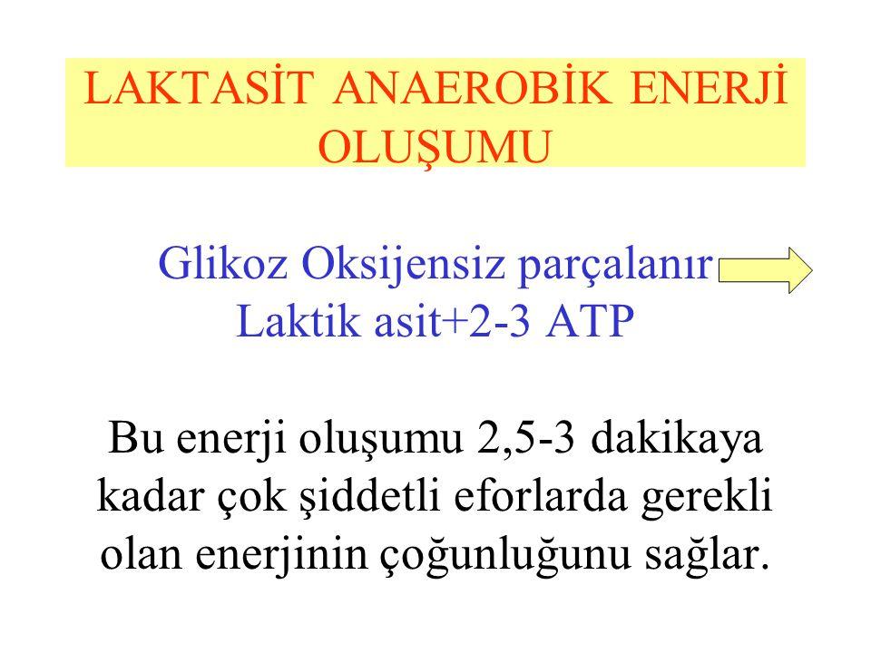 LAKTASİT ANAEROBİK ENERJİ OLUŞUMU Glikoz Oksijensiz parçalanır Laktik asit+2-3 ATP Bu enerji oluşumu 2,5-3 dakikaya kadar çok şiddetli eforlarda gerek