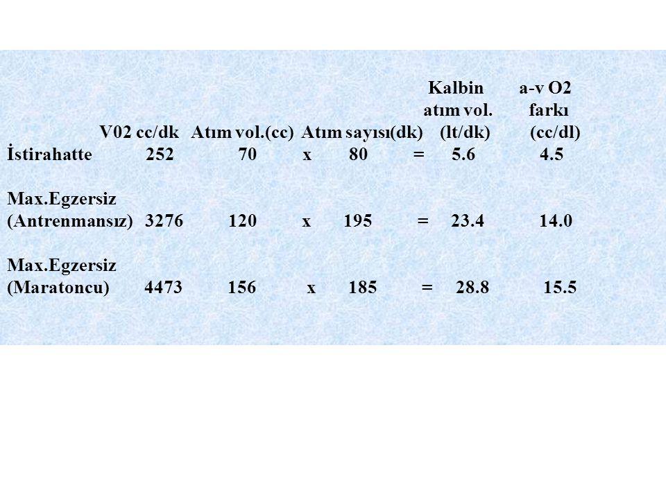 Kalbin a-v O2 atım vol. farkı V02 cc/dk Atım vol.(cc) Atım sayısı(dk) (lt/dk) (cc/dl) İstirahatte 252 70 x 80 = 5.6 4.5 Max.Egzersiz (Antrenmansız) 32