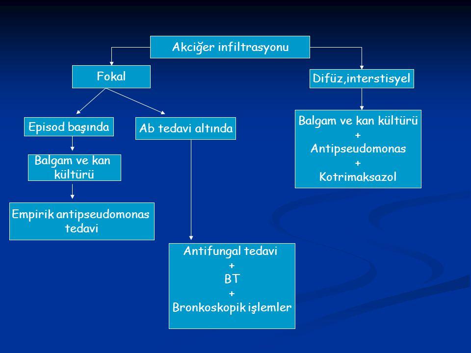 Akciğer infiltrasyonu Fokal Difüz,interstisyel Episod başında Ab tedavi altında Empirik antipseudomonas tedavi Balgam ve kan kültürü Antifungal tedavi
