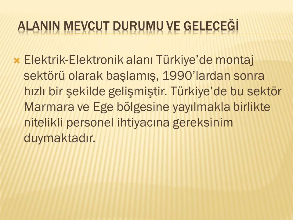  Elektrik-Elektronik alanı Türkiye'de montaj sektörü olarak başlamış, 1990'lardan sonra hızlı bir şekilde gelişmiştir. Türkiye'de bu sektör Marmara v