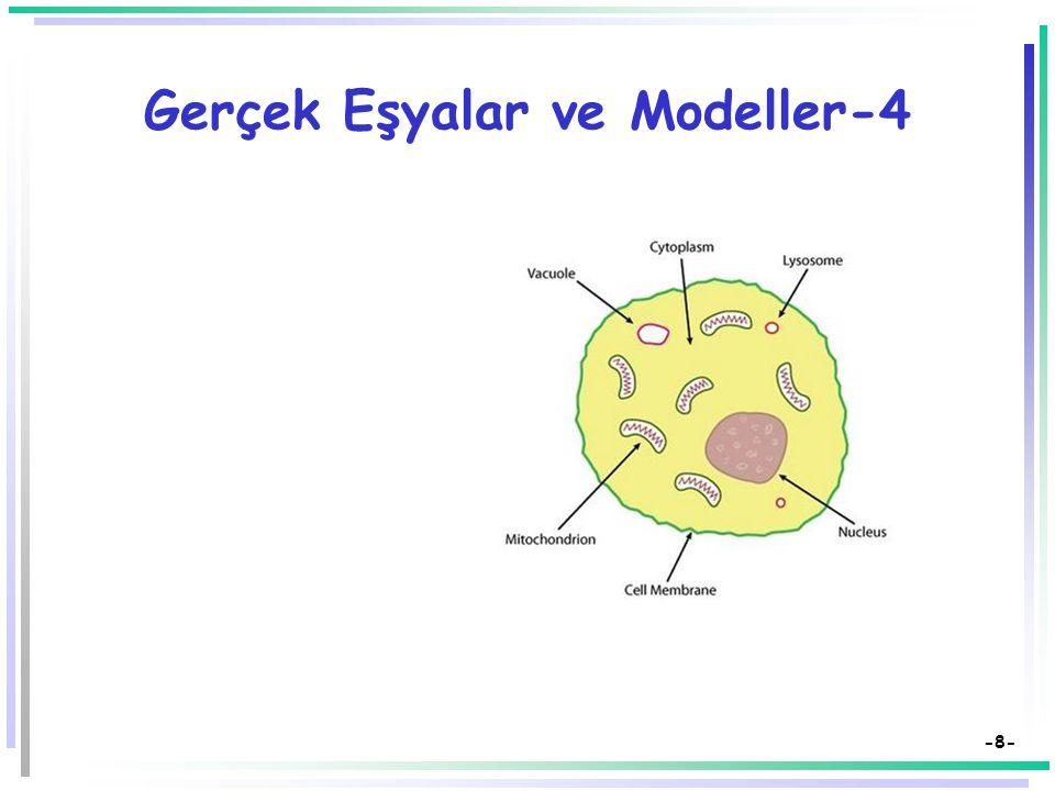 -7- Gerçek Eşyalar ve Modeller-3