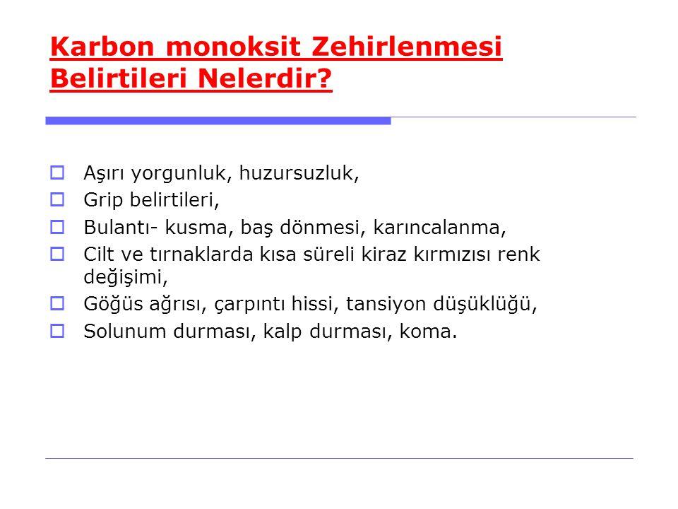 Karbon monoksit Zehirlenmesi Belirtileri Nelerdir.