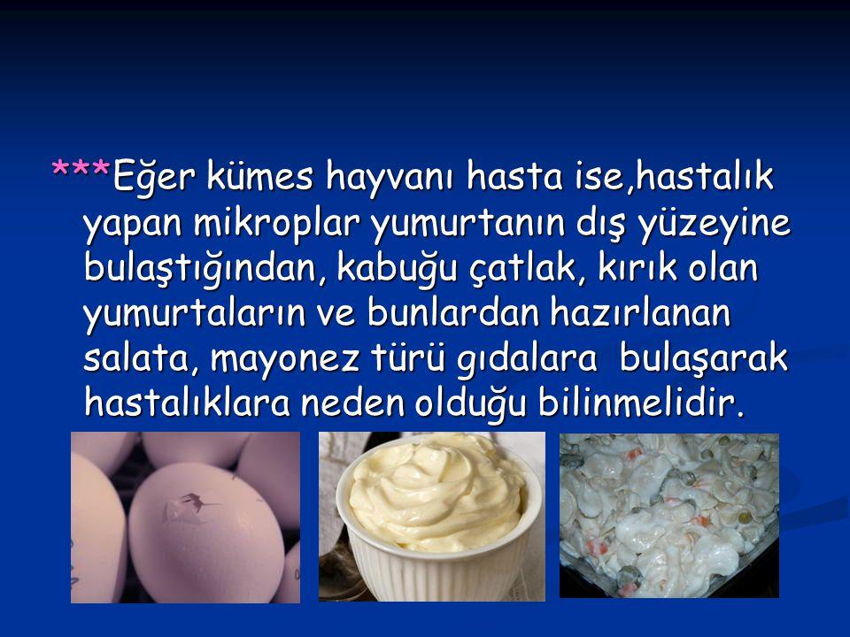 ***Eğer kümes hayvanı hasta ise,hastalık yapan mikroplar yumurtanın dış yüzeyine bulaştığından, kabuğu çatlak, kırık olan yumurtaların ve bunlardan ha