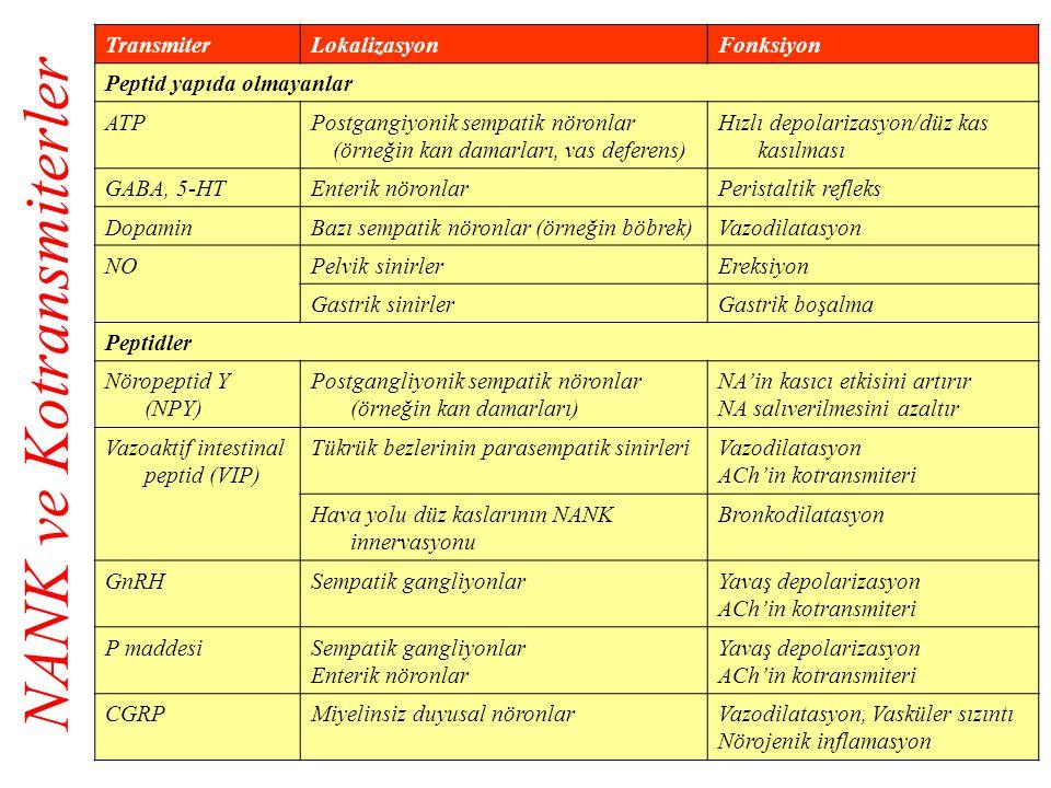 TransmiterLokalizasyonFonksiyon Peptid yapıda olmayanlar ATPPostgangiyonik sempatik nöronlar (örneğin kan damarları, vas deferens) Hızlı depolarizasyo