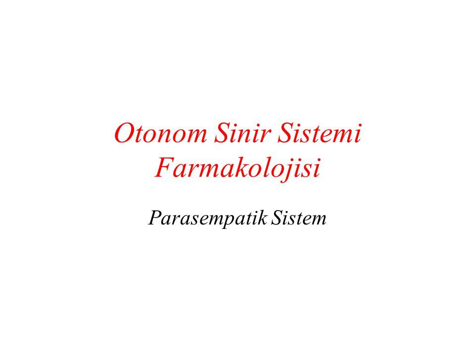 Otonom Sinir Sistemi Farmakolojisi Parasempatik Sistem