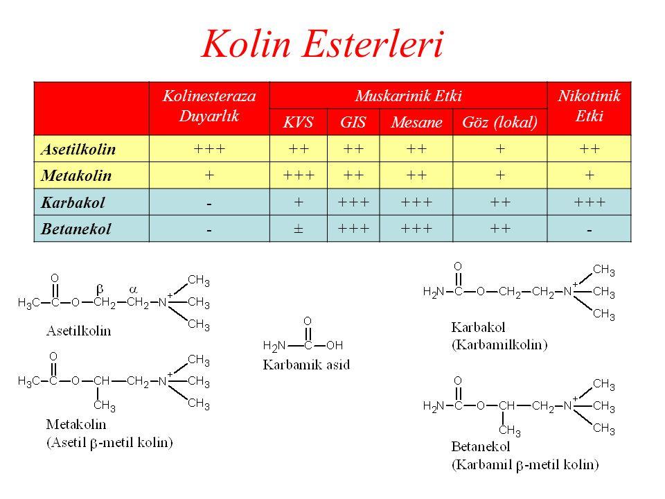 Kolin Esterleri Kolinesteraza Duyarlık Muskarinik EtkiNikotinik Etki KVSGISMesaneGöz (lokal) Asetilkolin+++++ + Metakolin++++++ ++ Karbakol-++++ +++++