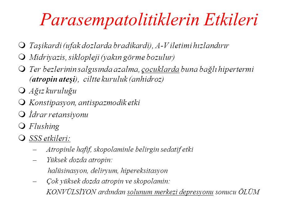 Parasempatolitiklerin Etkileri  Taşikardi (ufak dozlarda bradikardi), A-V iletimi hızlandırır  Midriyazis, siklopleji (yakın görme bozulur)  Ter be