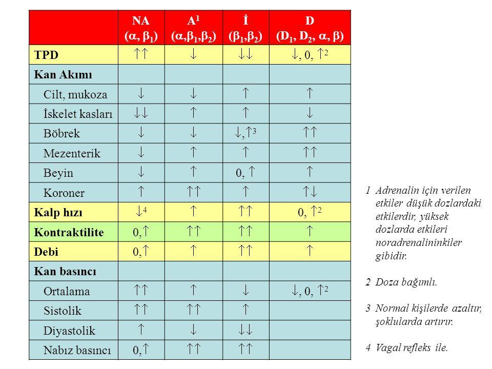 NA ( ,  1 ) A1(,1,2)A1(,1,2) İ(1,2)İ(1,2) D (D 1, D 2, ,  ) TPD , 0,  2 Kan Akımı Cilt, mukoza  İskelet kasları  Böbrek