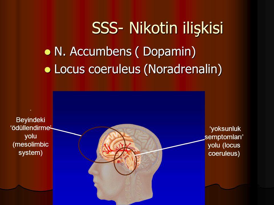 SSS- Nikotin ilişkisi N. Accumbens ( Dopamin) N. Accumbens ( Dopamin) Locus coeruleus (Noradrenalin) Locus coeruleus (Noradrenalin). Beyindeki 'ödülle