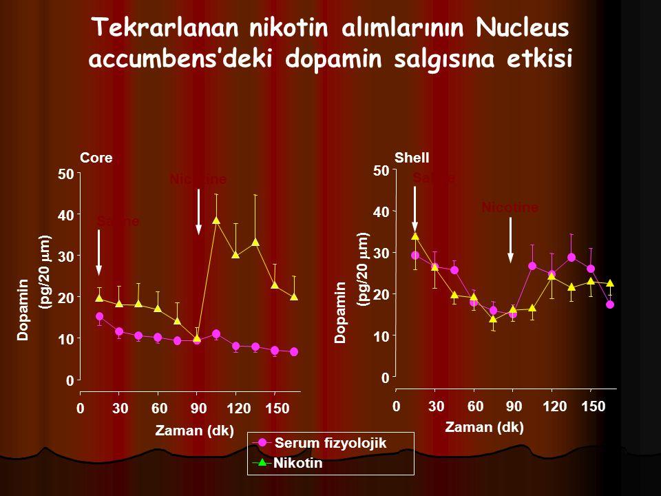 Tekrarlanan nikotin alımlarının Nucleus accumbens'deki dopamin salgısına etkisi Core Zaman (dk) 0306090120150 Dopamin (pg/20  m) 0 10 20 30 40 50 Zam