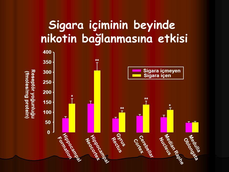 Sigara içiminin beyinde nikotin bağlanmasına etkisi Reseptör yoğunluğu (fmoles/mg protein) 0 50 100 150 200 250 300 350 400 Medulla Oblongata Median R